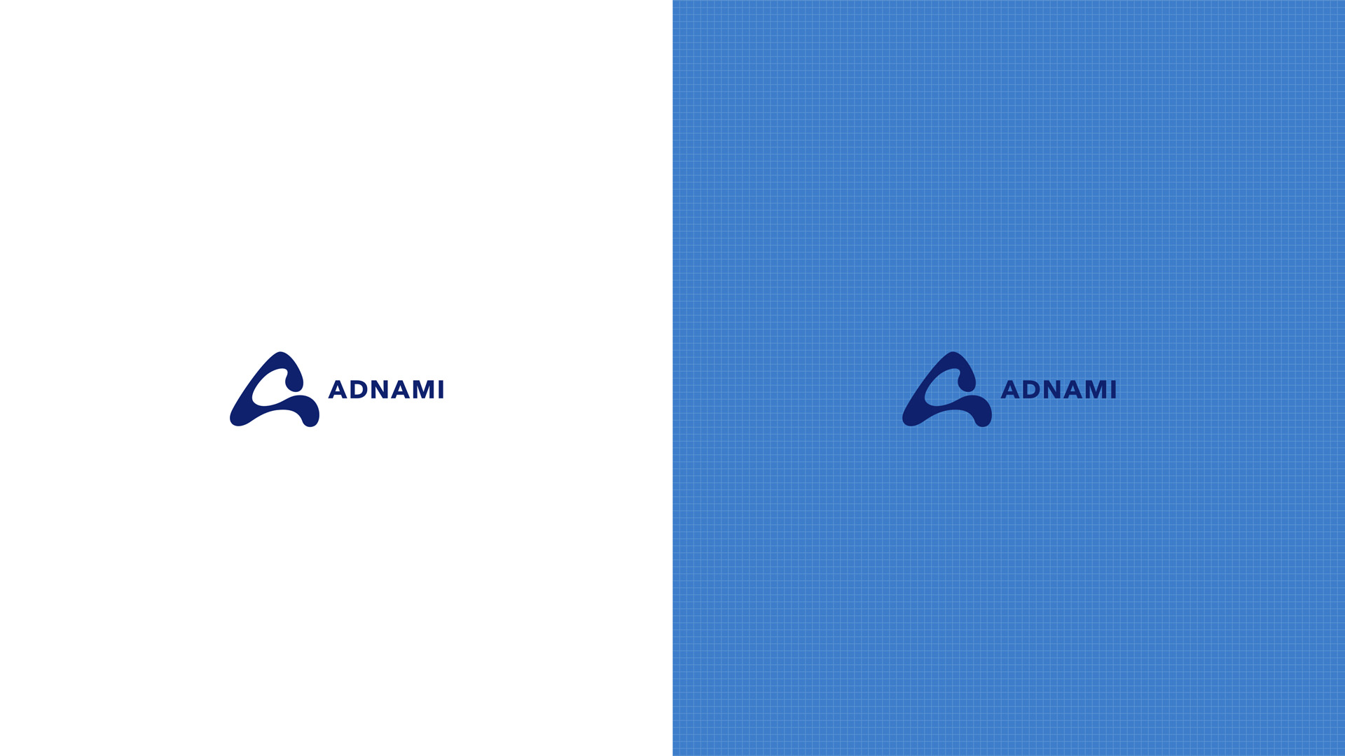 adnami_21